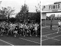 Falkirk pearl assurance half marathon