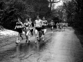 6 stage relays, pollock park, 1985