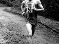 T Wilkie (SV), 6 stage relays, 1985